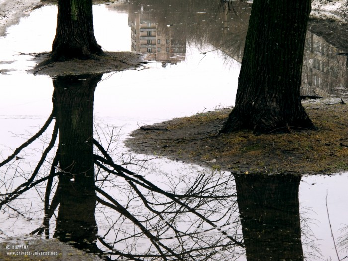 07.04.2011_Time-for-puddles.jpg