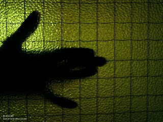 08.06.2011_Shadowplay.jpg