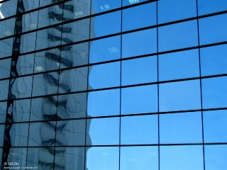 15.02.2011_Reflection.jpg