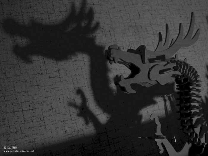 26.04.2011 Dragon's shadow