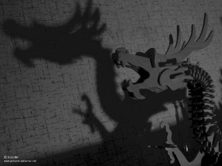 26.04.2011_Dragons-shadow.jpg