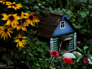 30.09.2011_Smallish-house.jpg