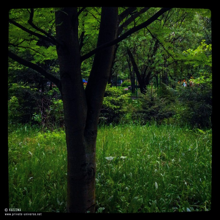 21.05.2016_How-green-was-my-valley.jpg