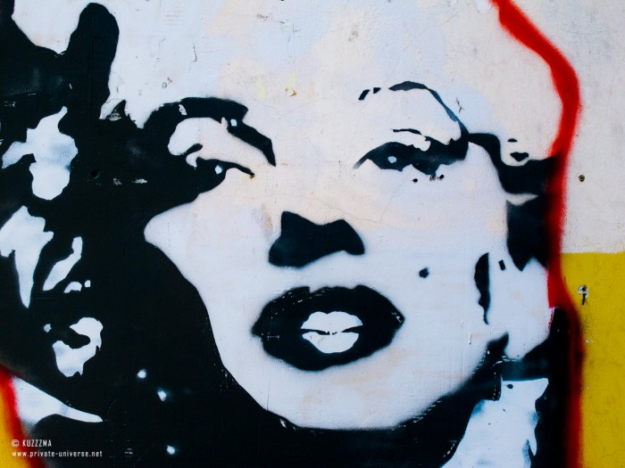 22.07.2011_Marilyn-Monroe-close-up-2.jpg