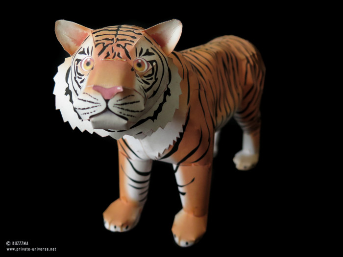 01.09.2019 Tiger papercraft by Canon